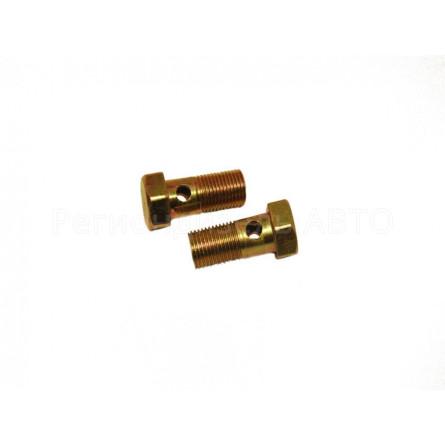 310122 Болт топливный дренажной трубки М10х1х22 (МАЗ Д-240) (318 - 85205)