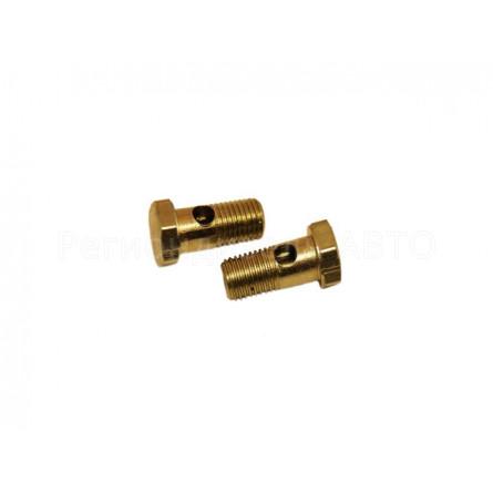 870007 Болт топливный дренажной трубки  М10х1,25Х23 (корректор 333 - 30)